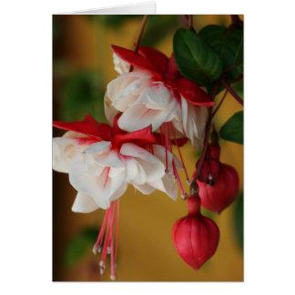 Fuchsia Blooms! Card