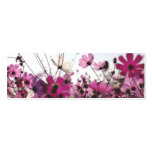 Fuchsia Chamomile Bookmark (Customizable) Double-Sided Mini Business Cards (Pack Of 20)