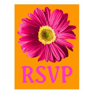 Fuchsia Daisy Flower RSVP Or Custom Post Card