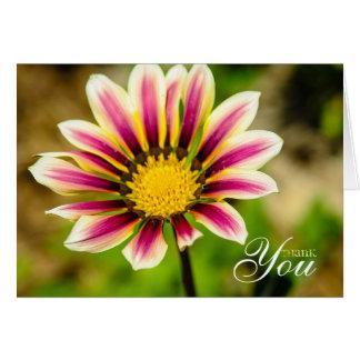 Fuchsia Daisy Thank You Card