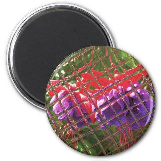 Fuchsia 'Dark Eyes' Magnet