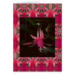 Fuchsia Flowers Greeting Cards