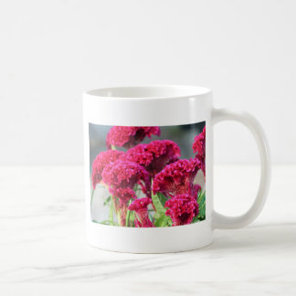 Fuchsia Flowers Mug II
