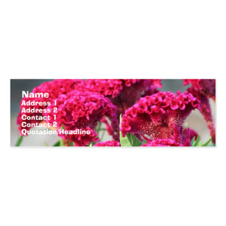 Fuchsia Flowers Profile Card Business Card Template