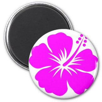 Fuchsia hibiscus flower magnet