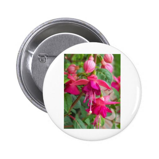 Fuchsia Paula Jane Button