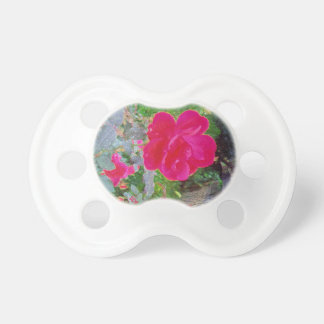 Fuchsia Pink Rose Flower in Bloom with Water Dew Pacifier