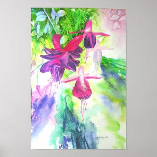 Fuchsia Posters