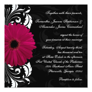 Fuchsia Scroll Gerbera Daisy w/Black and White Card