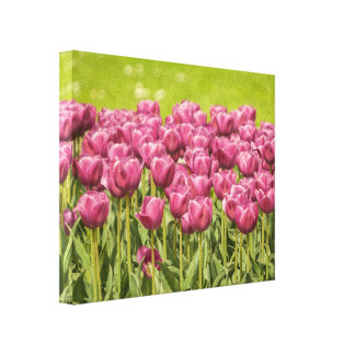Fuchsia Tulips - Canvas