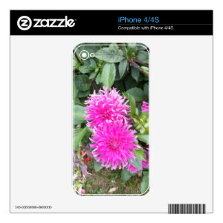 Fuchsia Twins Skins For The iPhone 4S