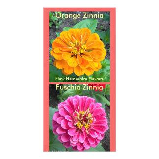 Fuchsia Zinnia-5-20-09, Dark Orange Zinnia-7-07... Customized Photo Card