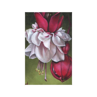 Fuchsias Gallery Wrapped Canvas
