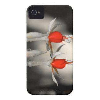 Fucsia dual iPhone 4 Case-Mate funda