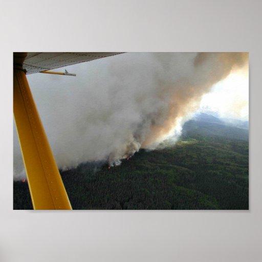 Fuego 2005 de la cala del condado de King Póster