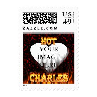 Fuego de Charles y mármol calientes del rojo de Sello