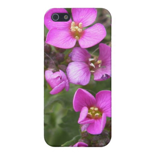 Fuego de la flor iPhone 5 carcasas
