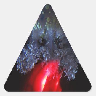 Fuego de las medusas pegatinas triangulo personalizadas