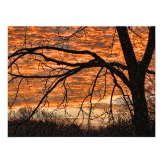 Fuego en el cielo de la mañana del invierno fotografía
