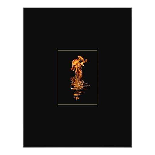 fuego y agua tarjetas informativas