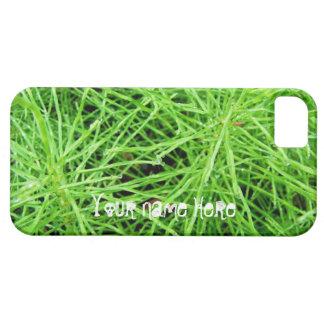 Fuegos artificiales de la hierba verde; iPhone 5 carcasa