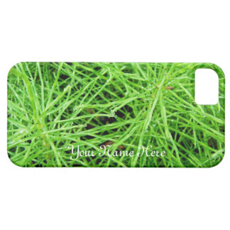 Fuegos artificiales de la hierba verde; iPhone 5 fundas