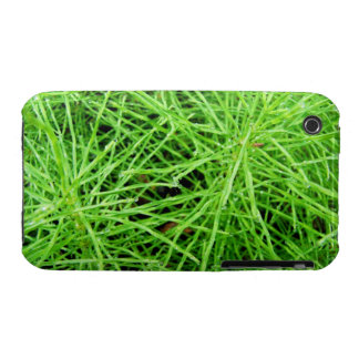 Fuegos artificiales de la hierba verde; Ningún iPhone 3 Protectores