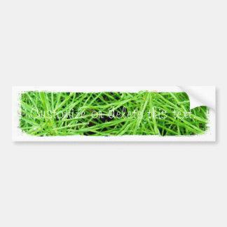 Fuegos artificiales de la hierba verde; Personaliz Etiqueta De Parachoque