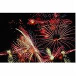 Fuegos artificiales, día de Canadá Esculturas Fotograficas