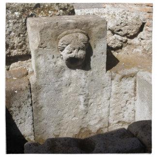 Fuente de la ciudad de Pompeya Servilletas De Papel