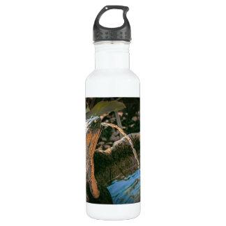 Fuente de la rana, en una botella de agua