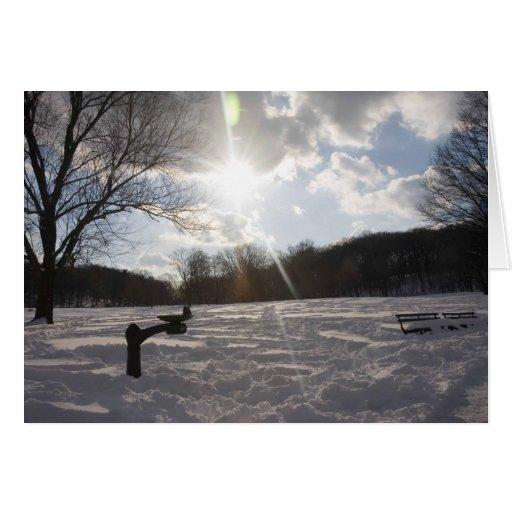 Fuente de la tarde de la nieve tarjeta de felicitación