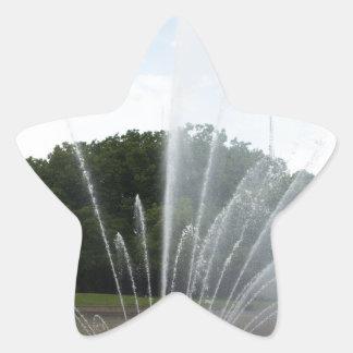 Fuente del centro de la ciencia de Seattle Pegatina En Forma De Estrella