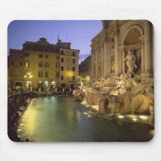 Fuente en la noche, Roma, Lazio, Italia del Trevi Tapetes De Raton