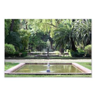 Fuente en Parque de María Luisa, Sevilla Cojinete