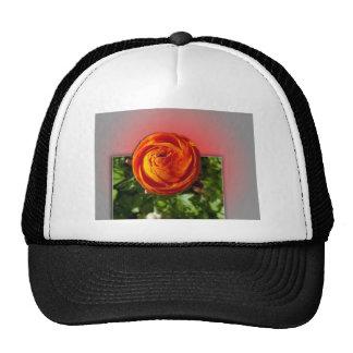 Fuera de la flor roja de los límites con el fondo  gorras de camionero