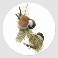 Round Sticker with Fuertes' Chestnut-backed Chickadee design