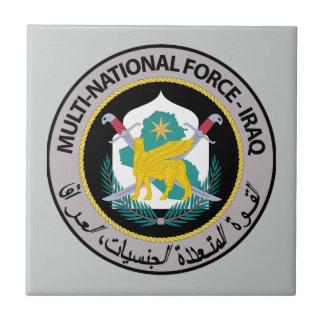 Fuerza nacional multi - Iraq Teja