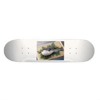 Fugu (Pufferfish) Sushi Skateboards