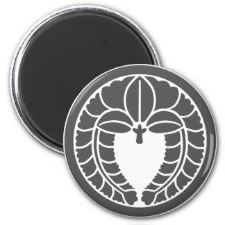 Fuji1 (DG) Magnet