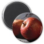 Fuji Apples Fridge Magnets
