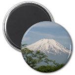 Fuji Refrigerator Magnets