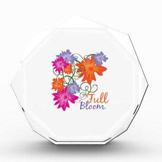 Full Bloom Award