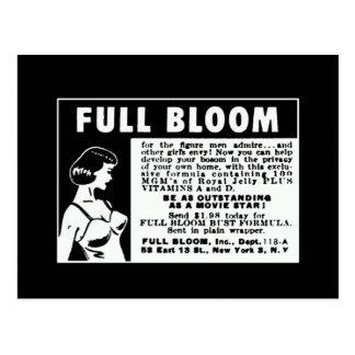 Full Bloom - Breast Enhancing Vitamins Postcard