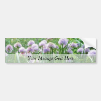 Full Bloom - Chive Flowers Car Bumper Sticker