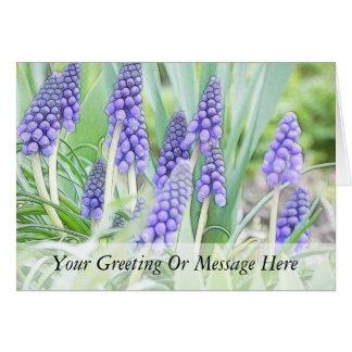 Full Bloom - Grape Hyacinths! Greeting Card