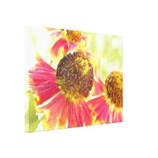 Full Bloom – Heleniums! Gallery Wrap Canvas
