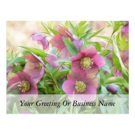 Full Bloom - Hellebores! Postcard