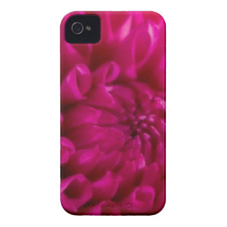 Full Bloom iPhone 4 Covers