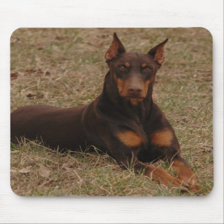 Full Color Red and Rust Doberman Pinscher Mousepads